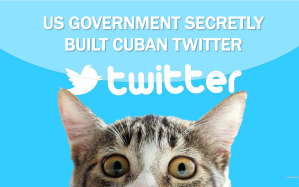 Current-Event-Cat-Cuban-Twitter